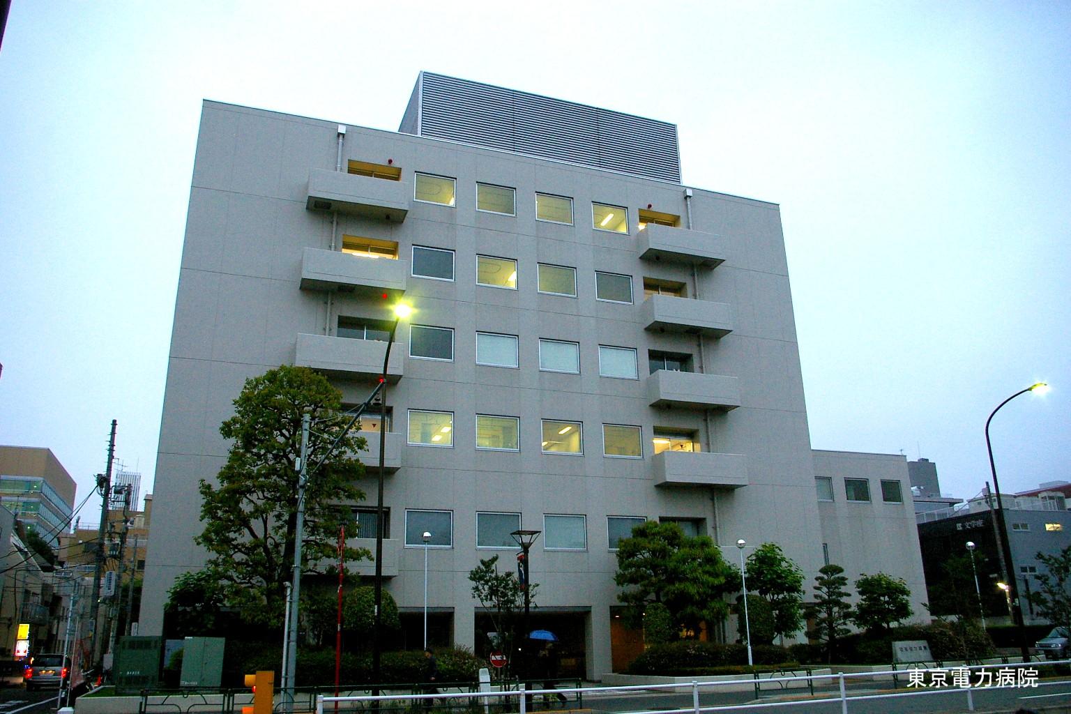 電力 東京