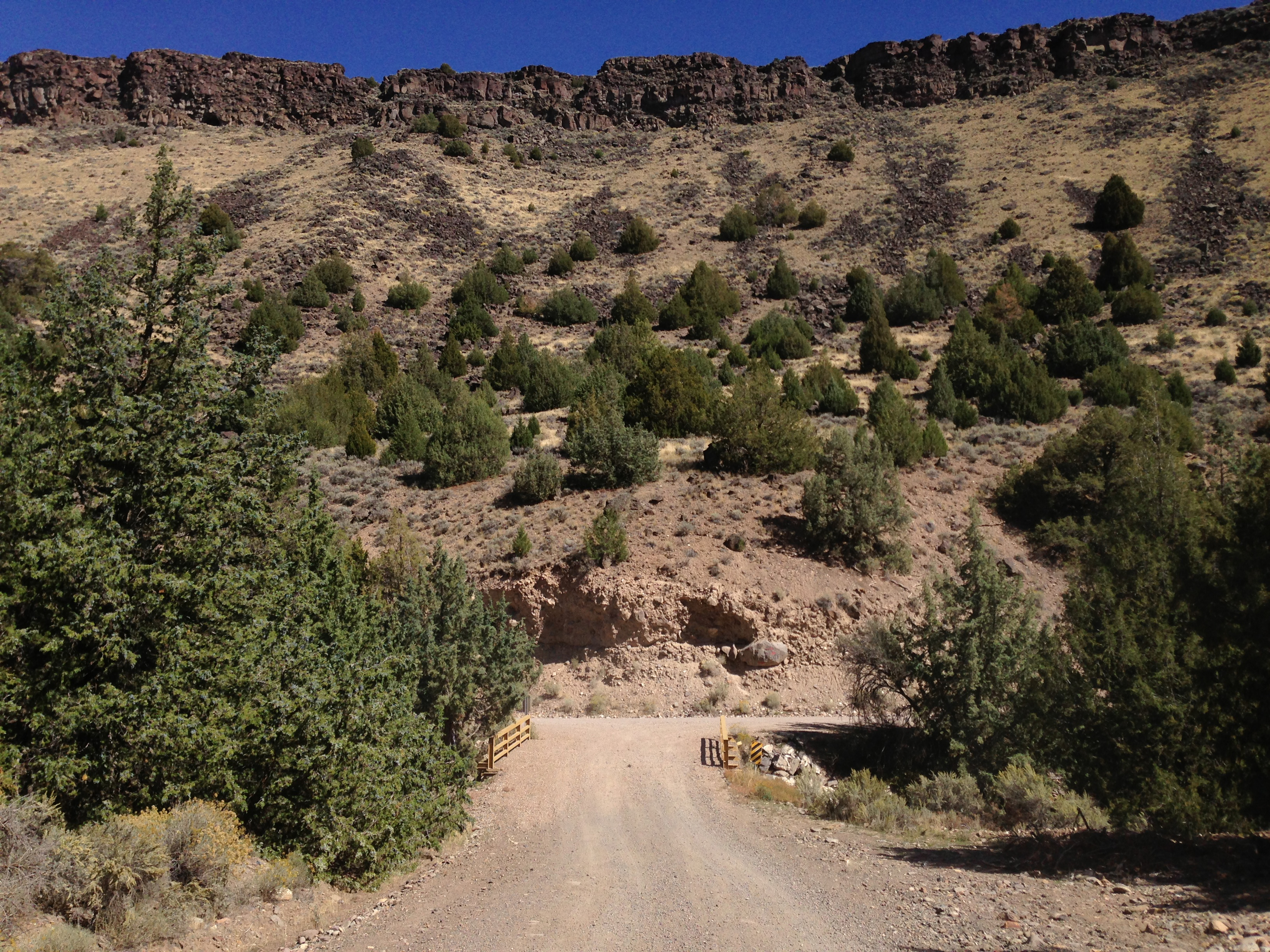 owyhee county dating Owyhee county, idaho: bibles, biographies, cemeteries, census, genealogy, newspapers, obituaries, vitals: births, marriages, deaths.