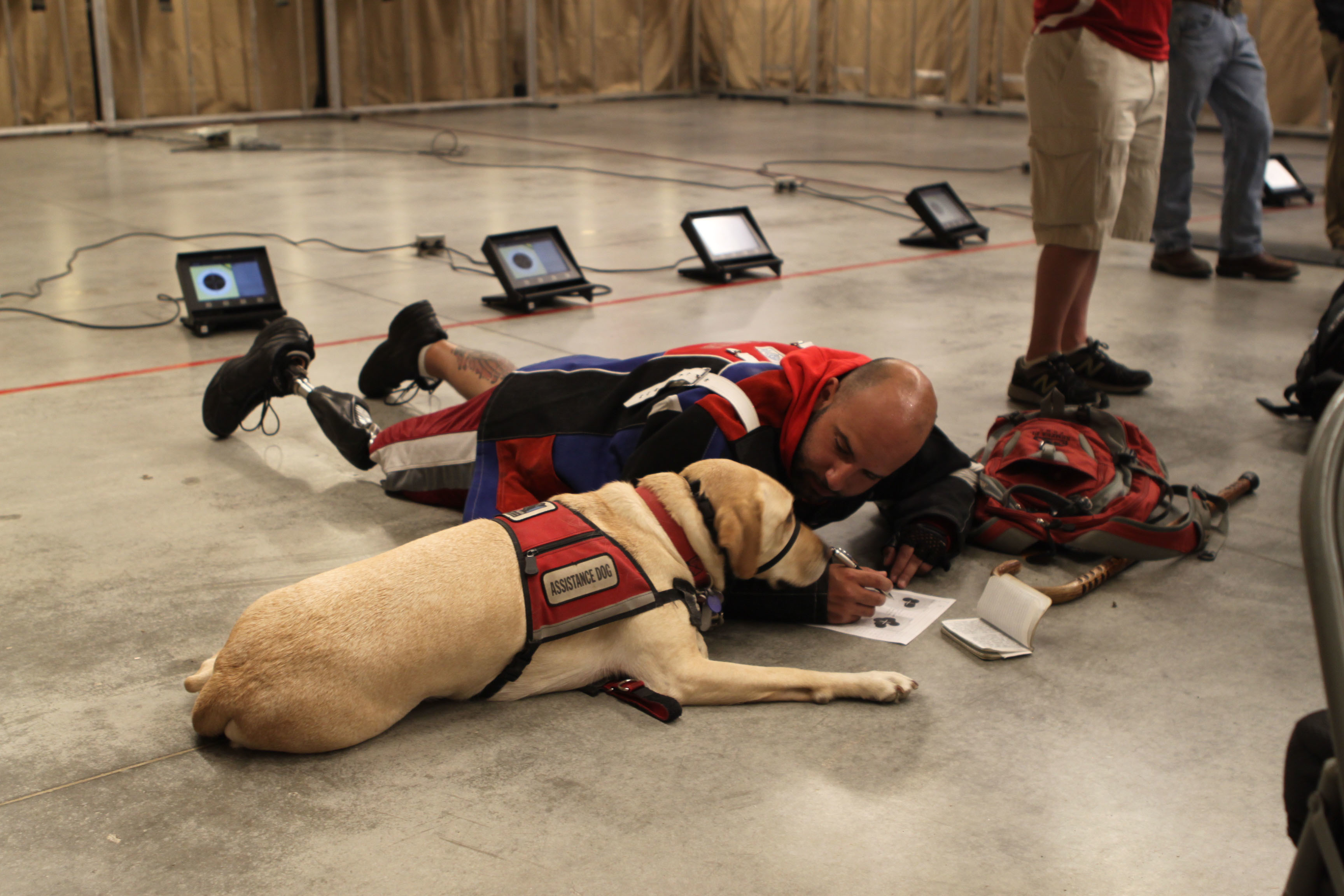 Image Result For Orlando Dog Training