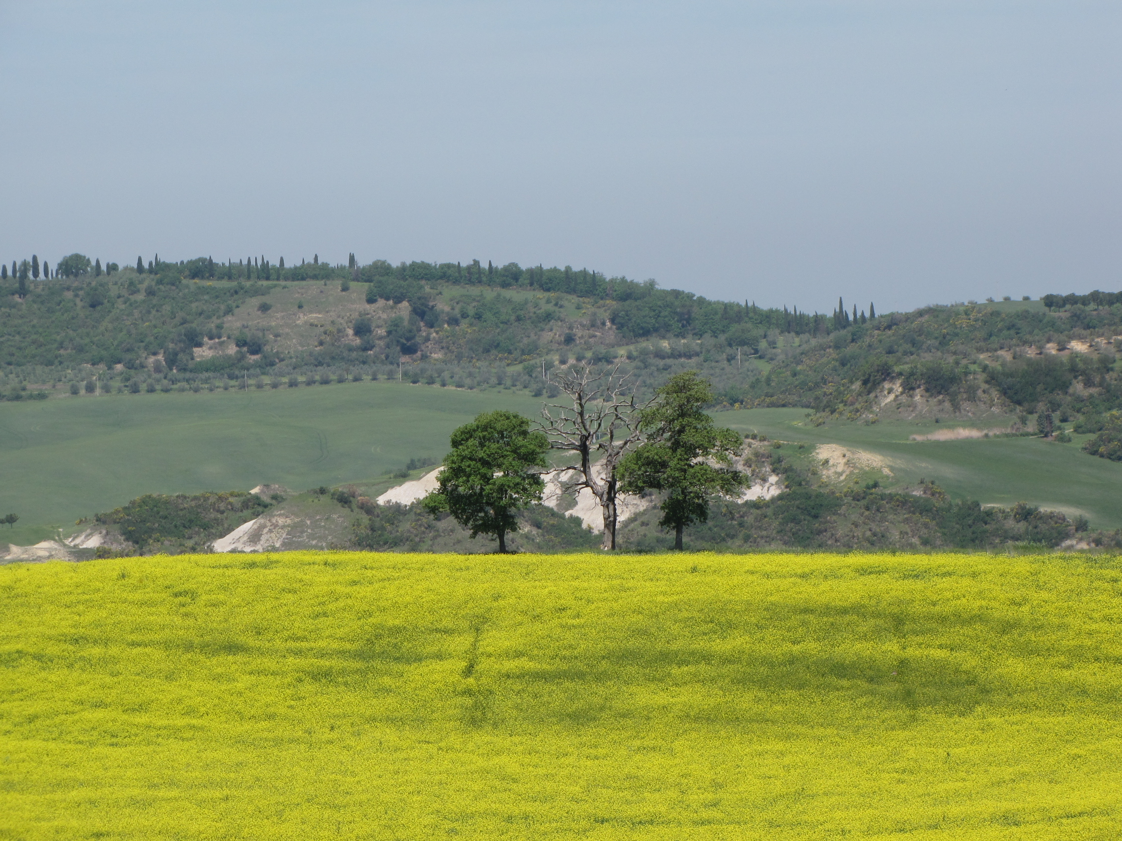 Itinerary in the great scenery of the Val d'Orcia. Biancane sotto Pienz