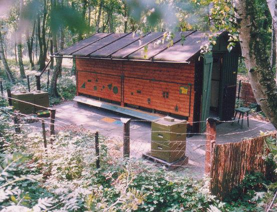File:Bienenhaus und Magazine.jpg - Wikimedia Commons