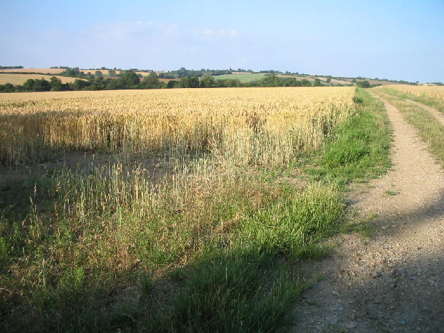 Bury to Clare walk at Thurston - geograph.org.uk - 30779