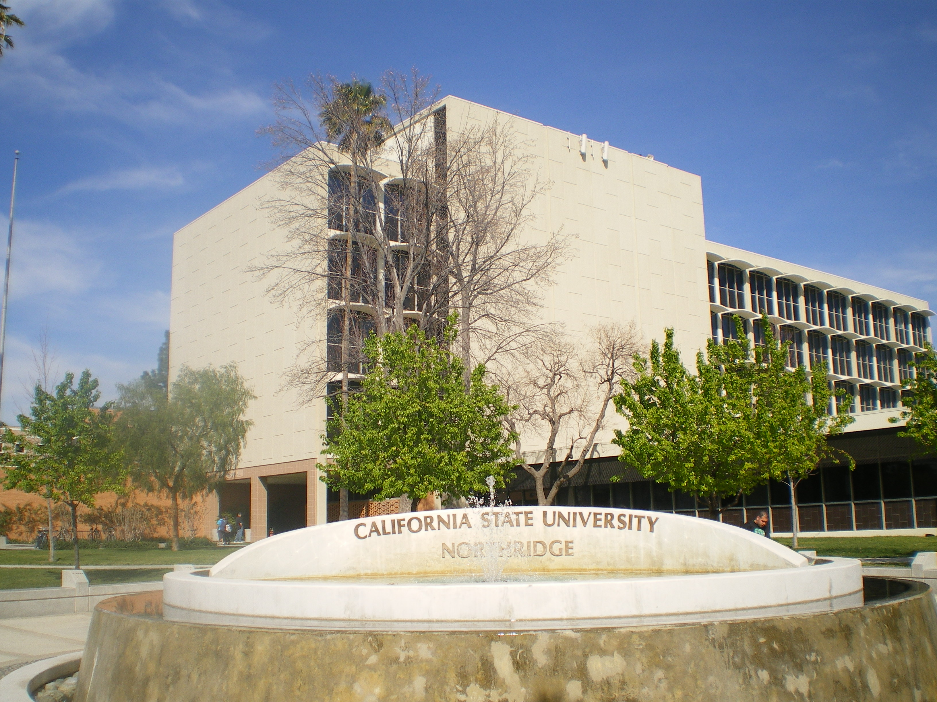 Cal State Long Beach Social Work Requirements