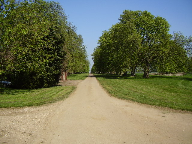 Chestnut Avenue to Grimsthorpe Castle - geograph.org.uk - 401710