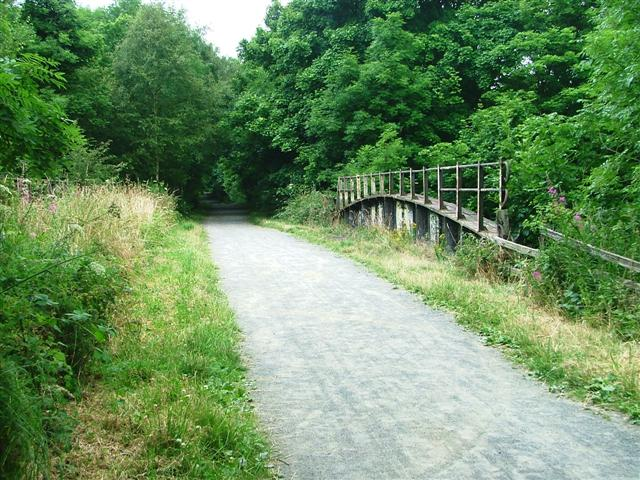 Disused Railway Bridge over the River Browney - geograph.org.uk - 30066