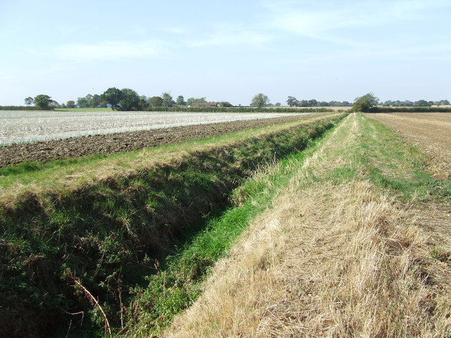 Drainage Ditch - geograph.org.uk - 1509442.jpg
