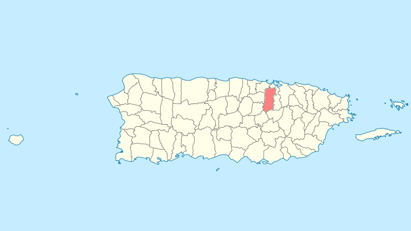FileLocator Map Puerto Rico Bayamonpng Wikimedia Commons - Puerto rico united states map