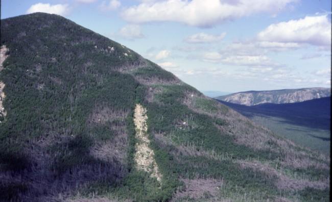 Mount Coe Wikipedia