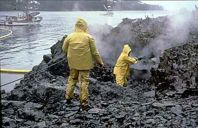 http://upload.wikimedia.org/wikipedia/commons/5/52/OilCleanupAfterValdezSpill.jpg