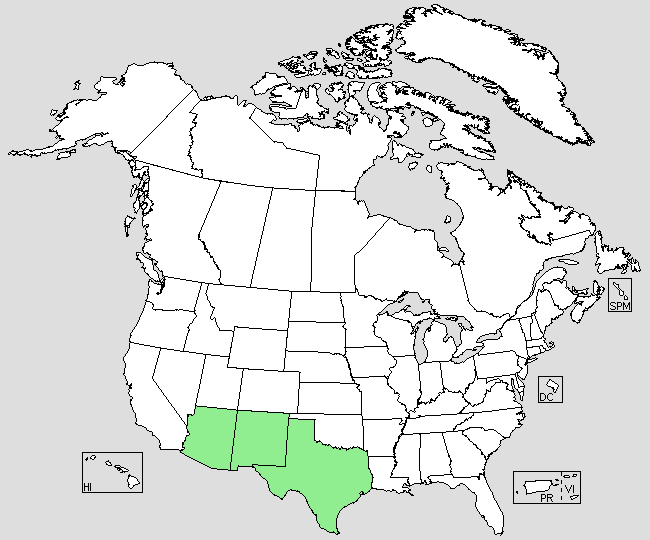 FileOpuntia Macrocentra Us Distribution Mappng Wikimedia Commons - Us distribution map