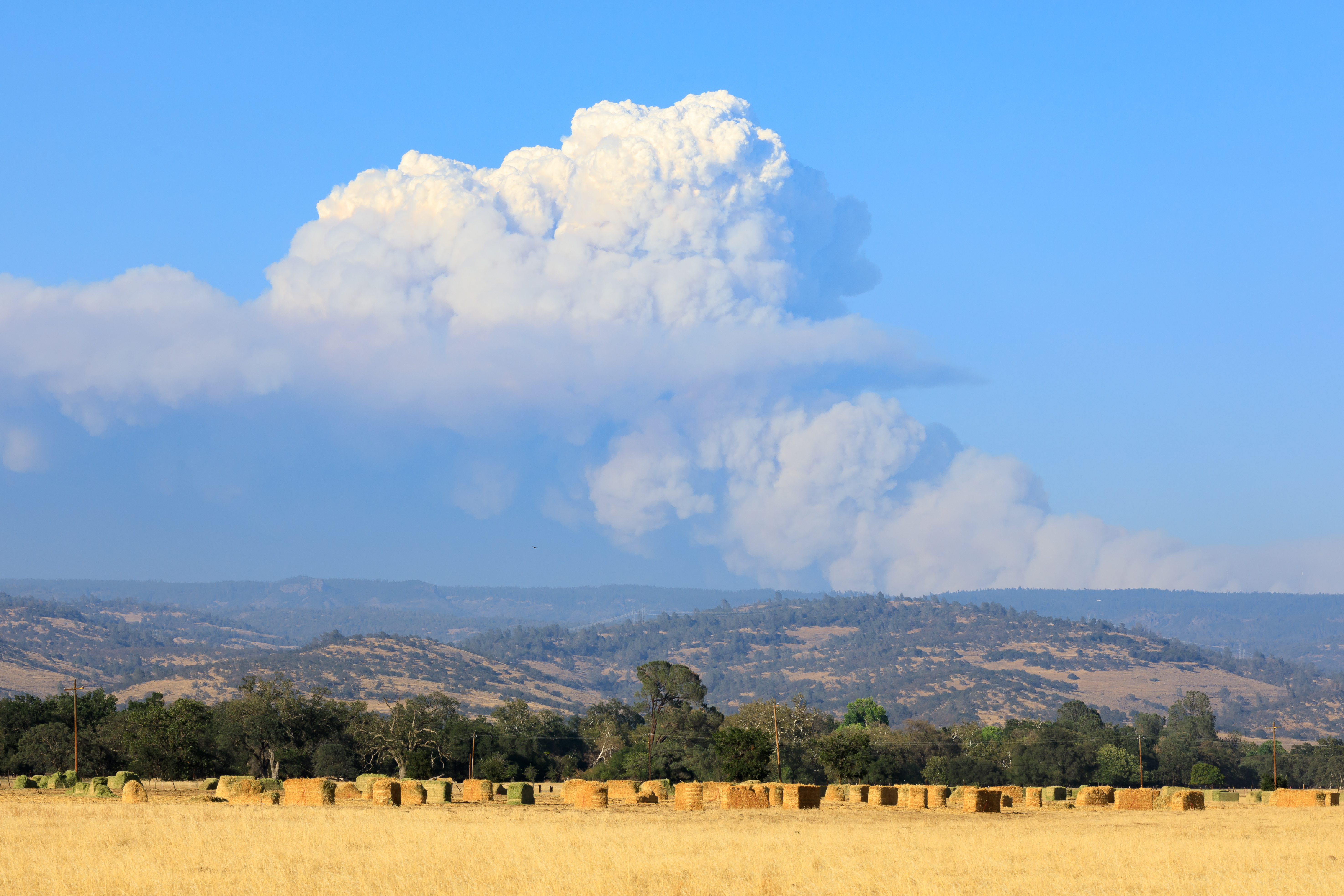 Alisal Fire Only 5% Contained As Evacuations Ordered In Santa Barbara County