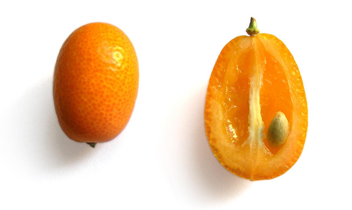 Kumquat  Definition of Kumquat by MerriamWebster