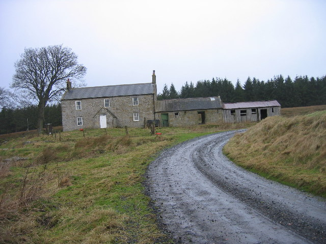 Redpath in the Harwood Forest - geograph.org.uk - 118940