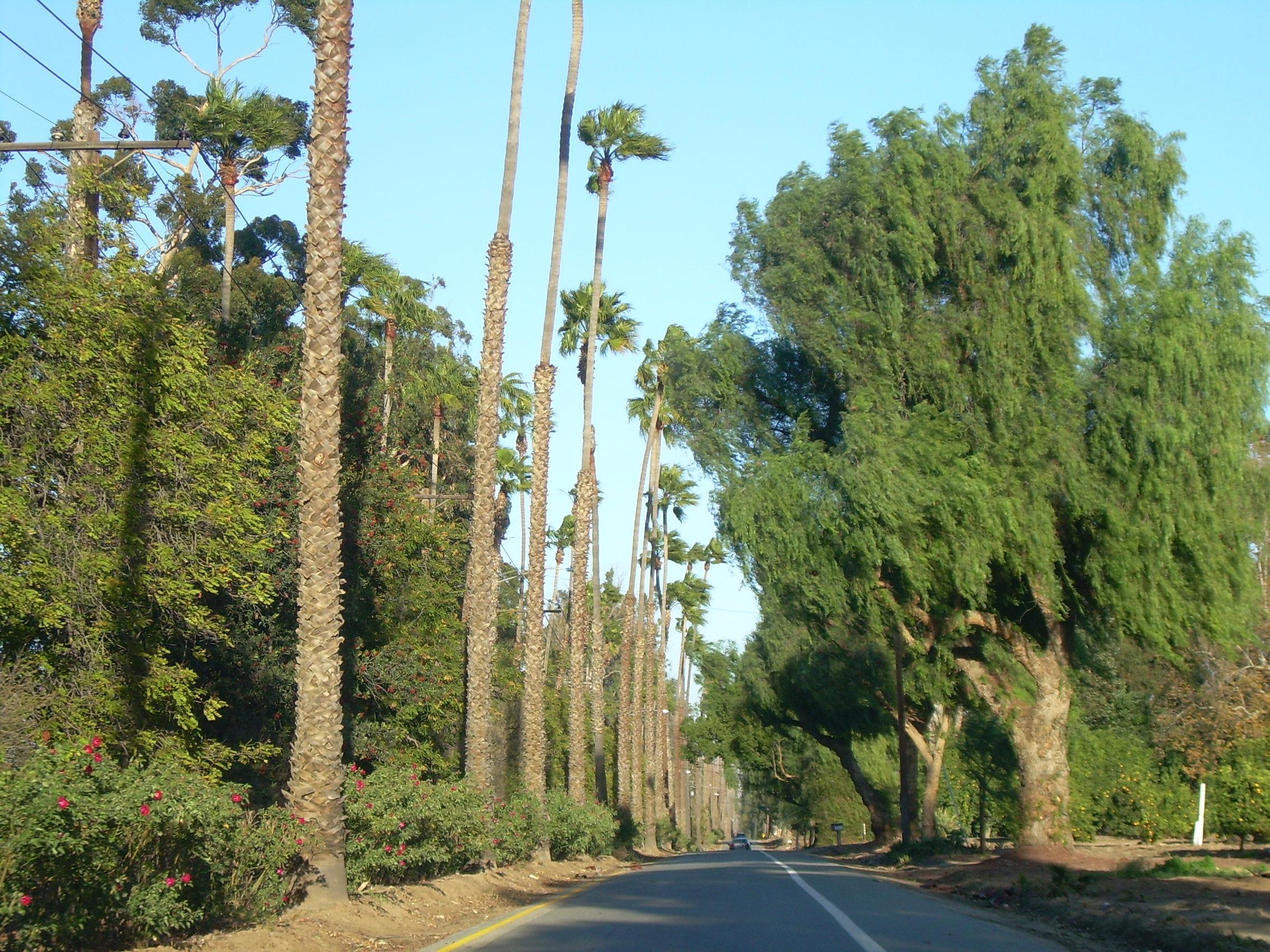 Victoria Avenue (Riverside, California) - Wikipedia