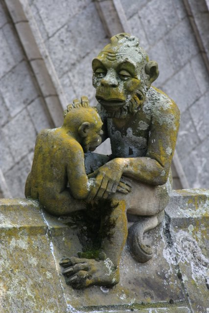 Gargoyle of the Day: St. John's Cathedral, 's-Hertogenbosch, Netherlands