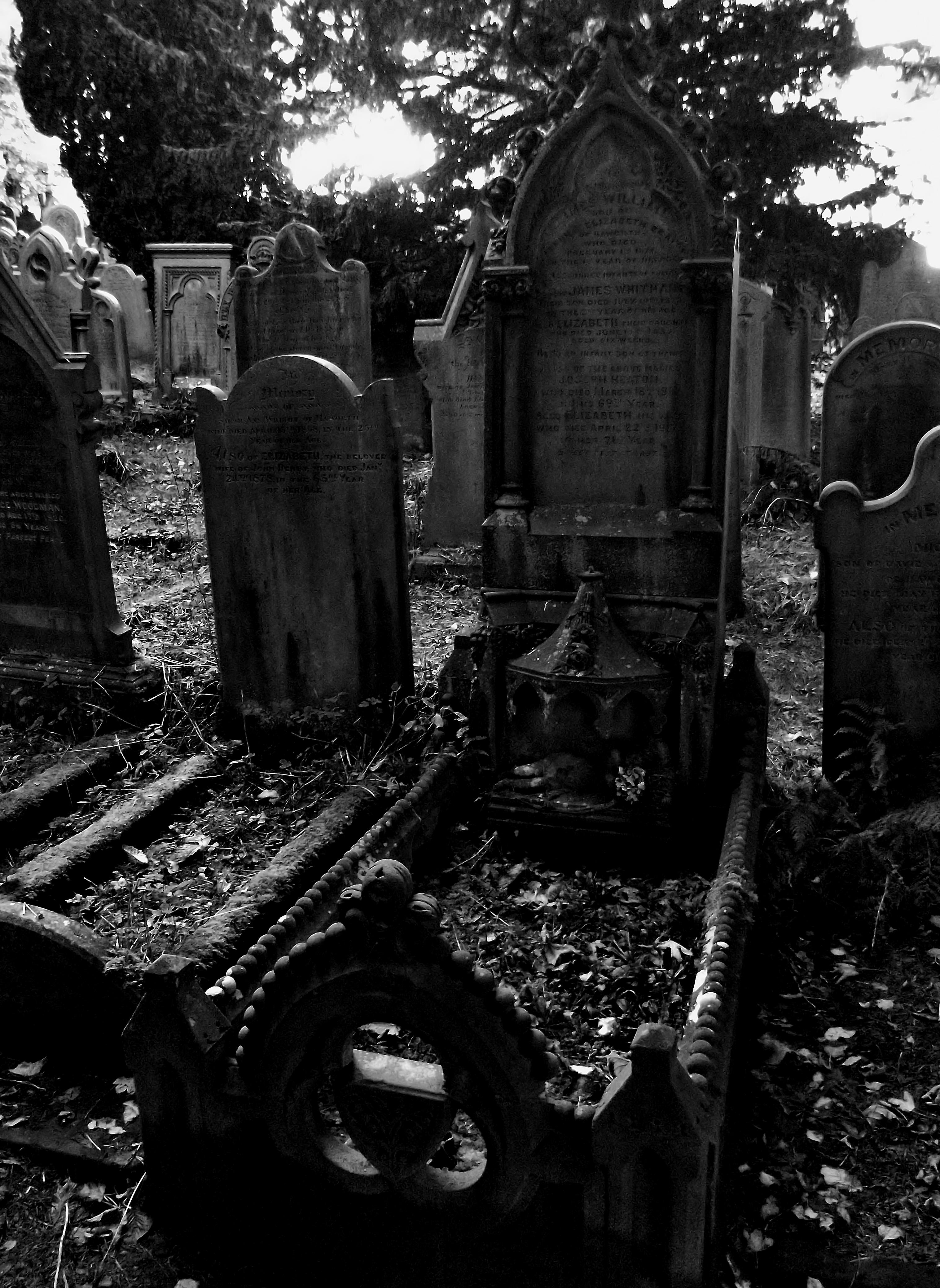 Bildergebnis für gothic horror landscape