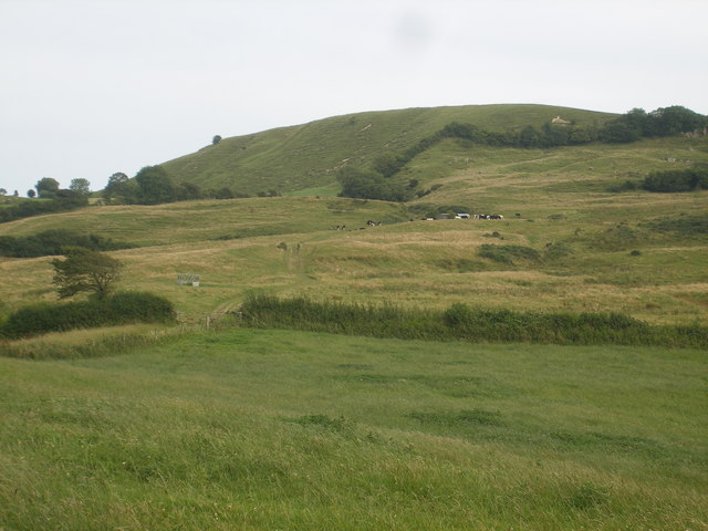 Towards Eggardon Hill - geograph.org.uk - 1427051