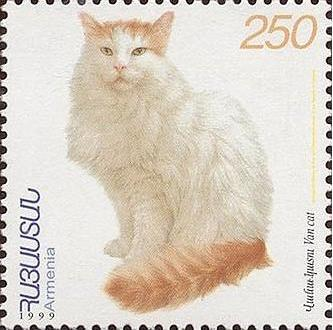 http://upload.wikimedia.org/wikipedia/commons/5/52/Van_cat.JPG