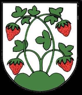 File:Wappen Butschbach.png