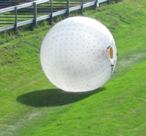 Zorb Ball 24