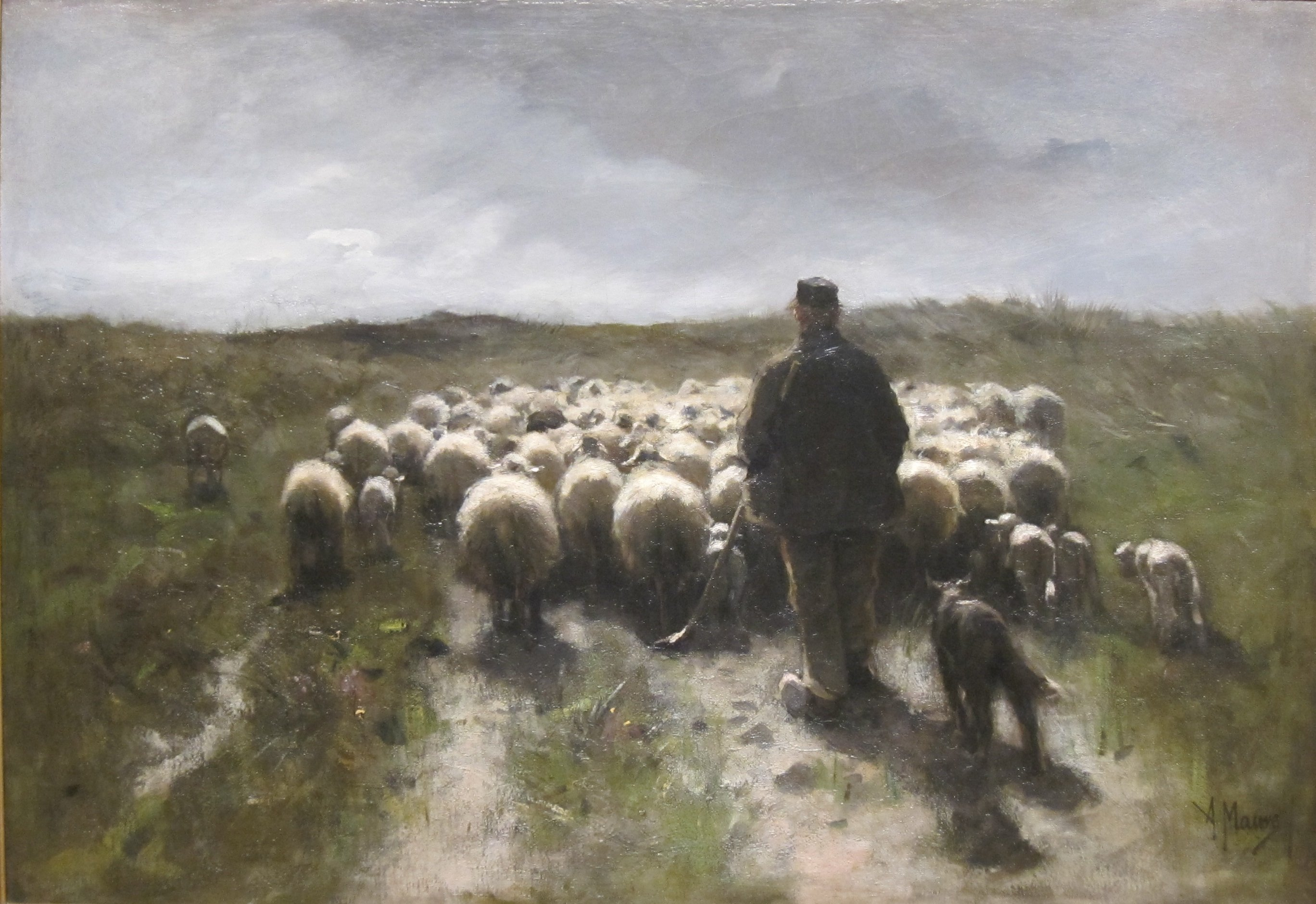 FileShepherd And Sheep By Anton Mauve Cincinnati Art