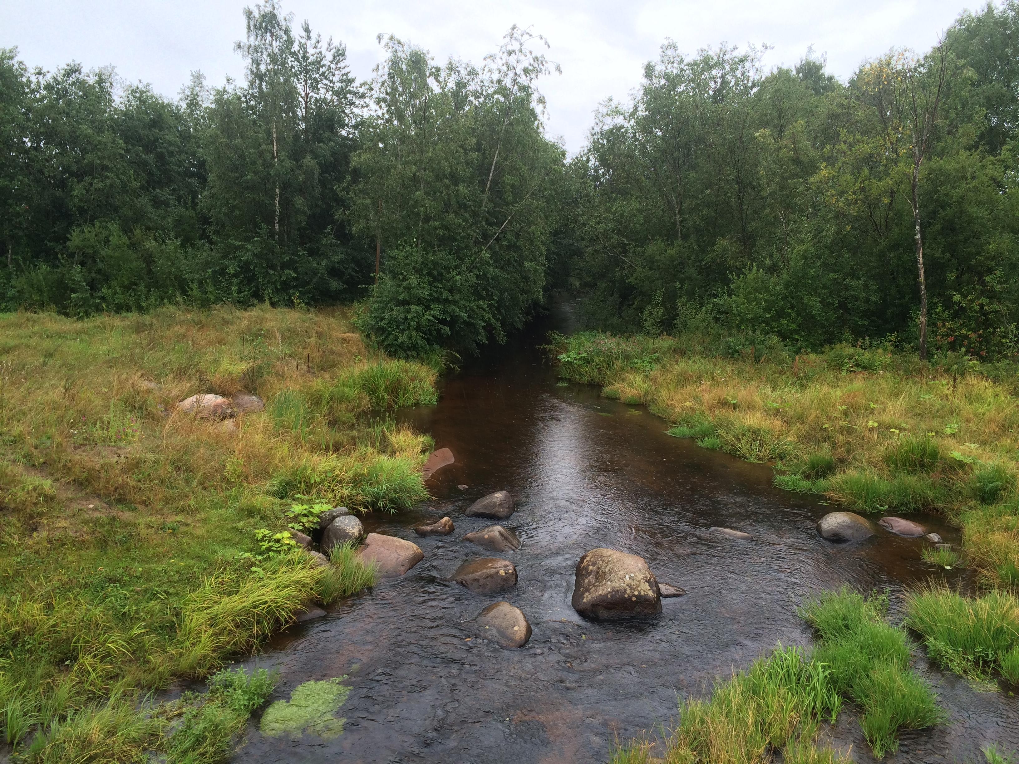 фото реки черной карелия образа японской леди
