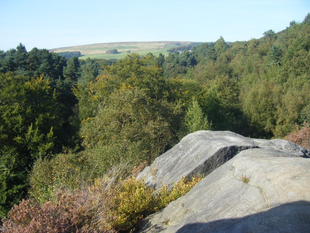 Above the Woodland, Hardcastle Crags - geograph.org.uk - 1492118