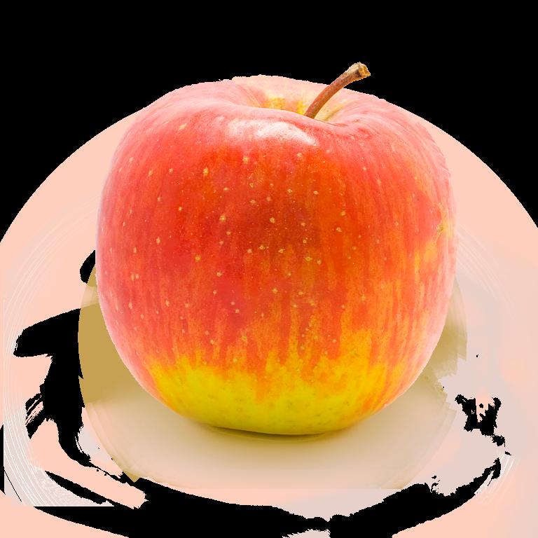 Red Apple Png File app...
