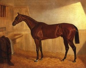 Bay Middleton (horse) British-bred Thoroughbred racehorse