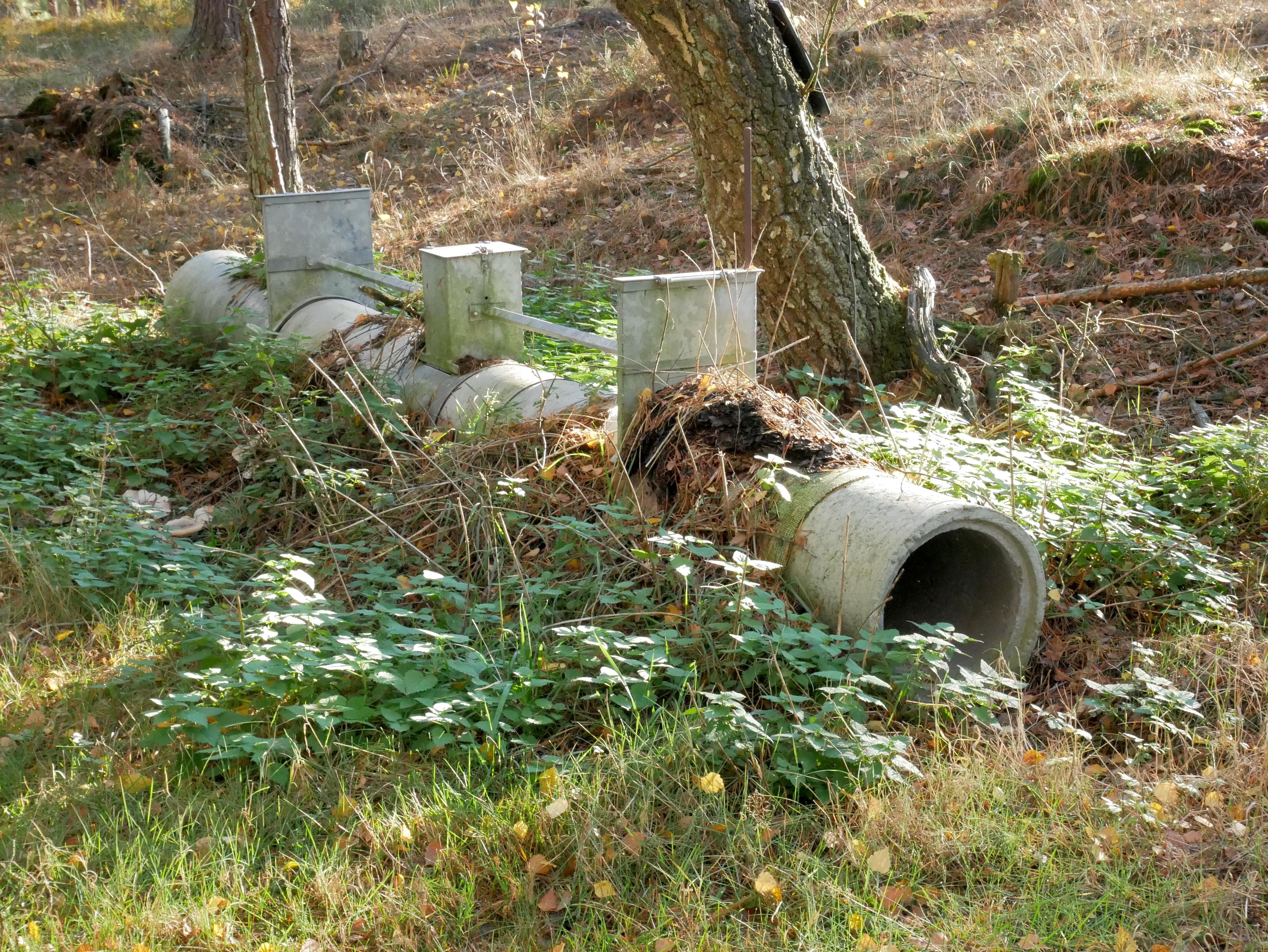 file:betonrohrfalle im wald - wikimedia commons