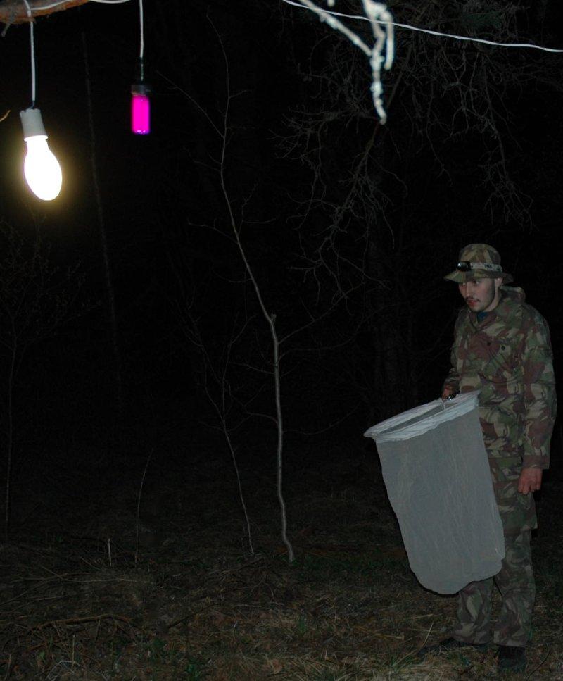 люминофор рыбалка