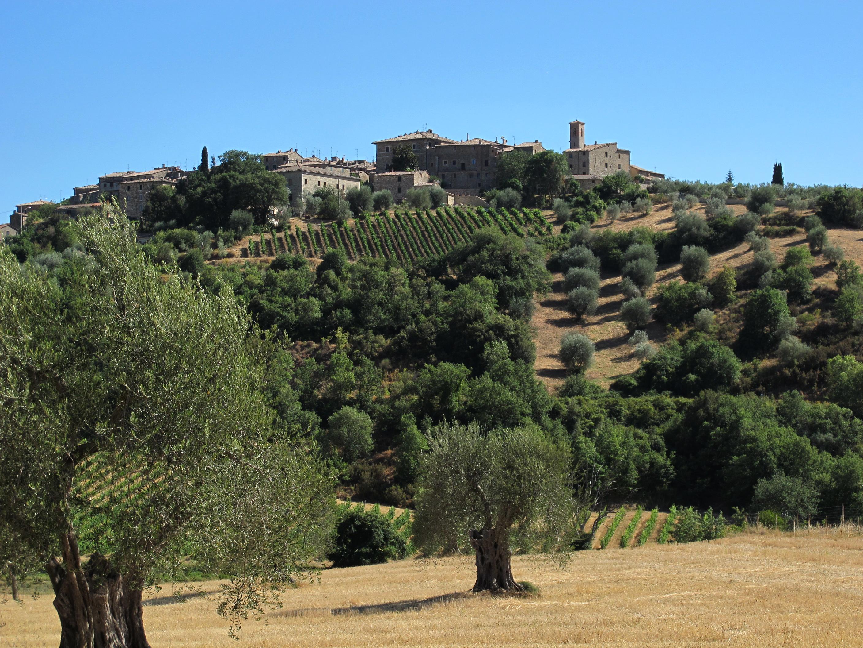 Castelnuovo dell'Abate – Veduta