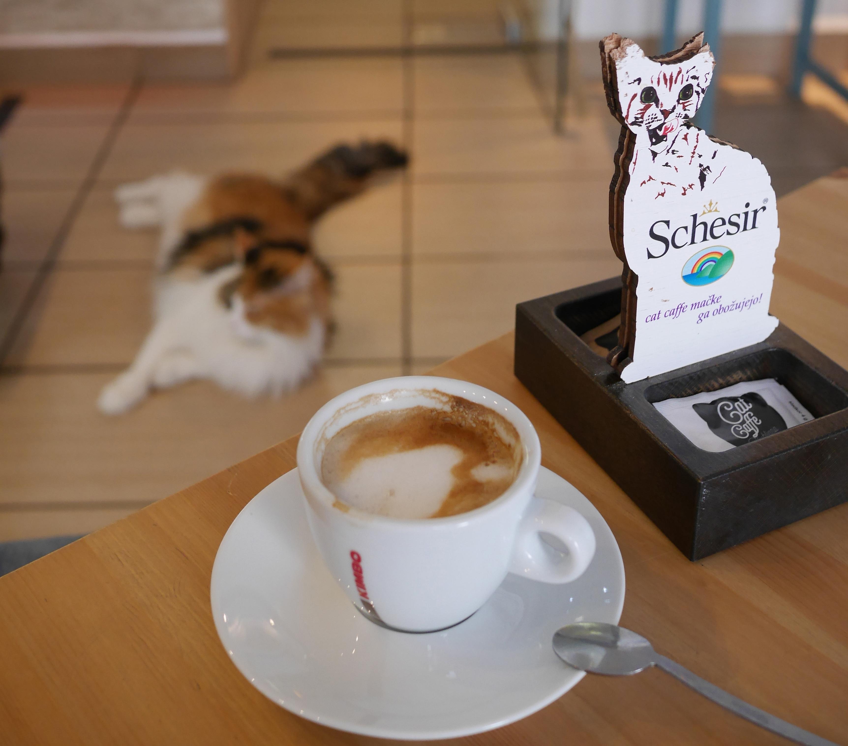 Angeles De Cafe