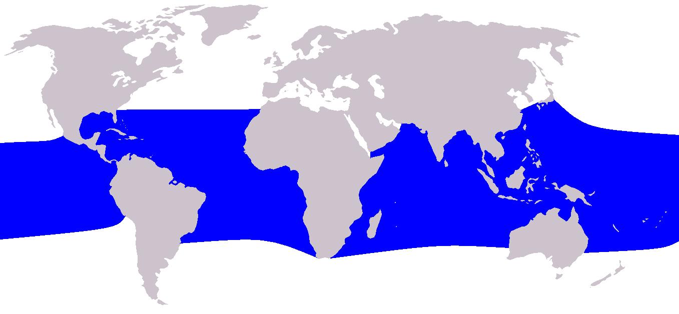 Cetacea range map Fraser'sDolphin.png