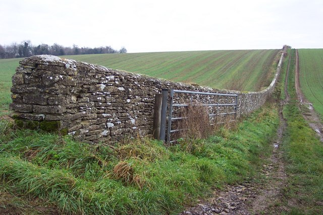 Cotswold Dry Stone Wall, near Gore Hill Covert - geograph.org.uk - 296542