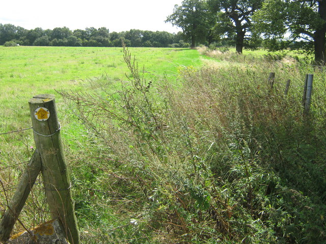 Darenth Valley Path towards Chipstead - geograph.org.uk - 1450209