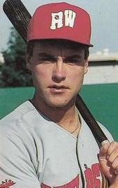 Dave Hollins American baseball player