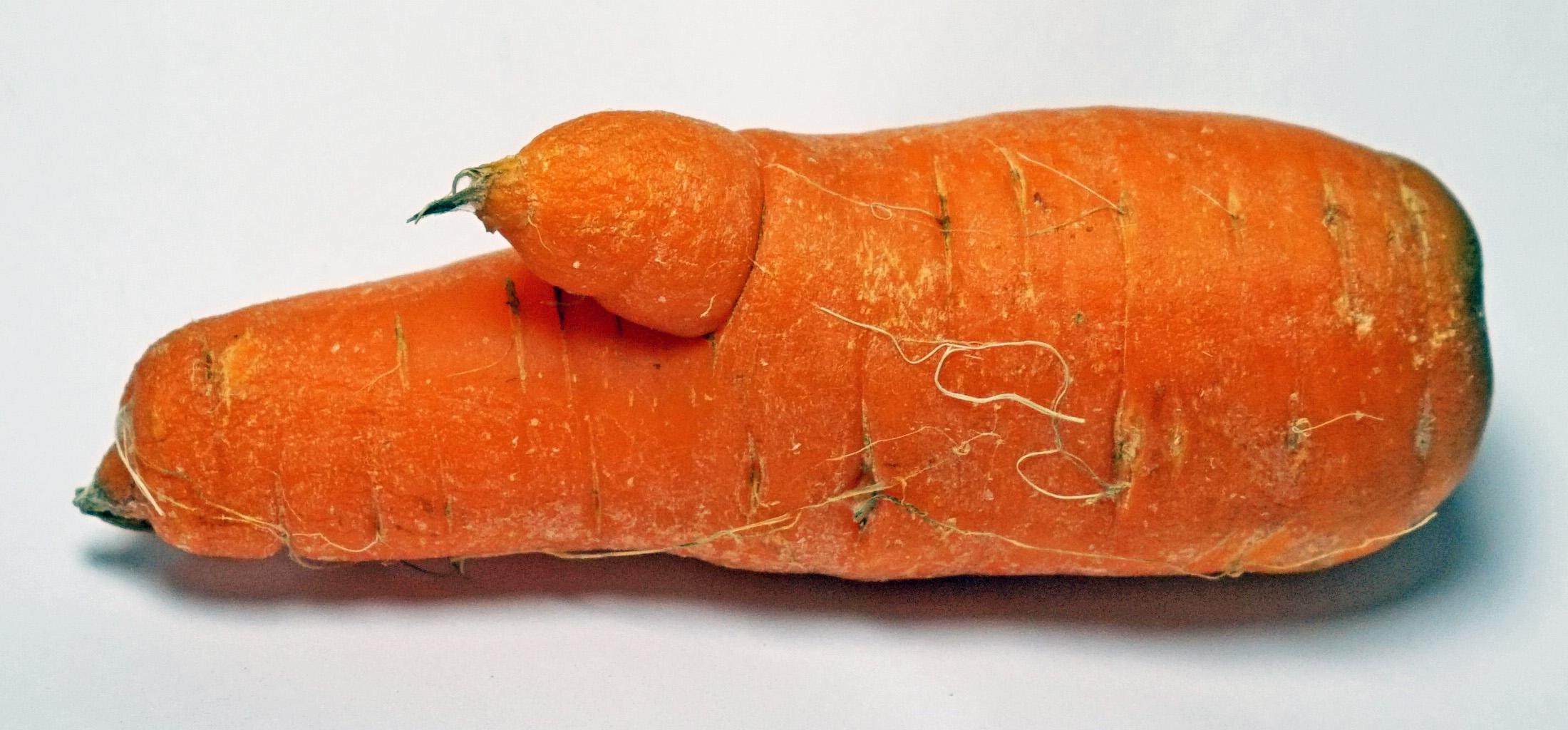 Image result for deformed carrots
