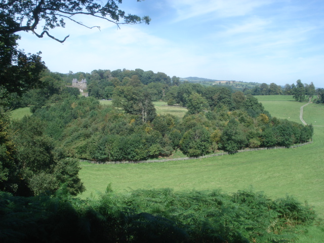 Dinefwr Park - geograph.org.uk - 539304