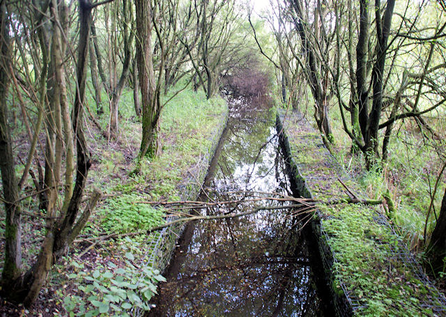 Drainage Ditch - geograph.org.uk - 980556.jpg