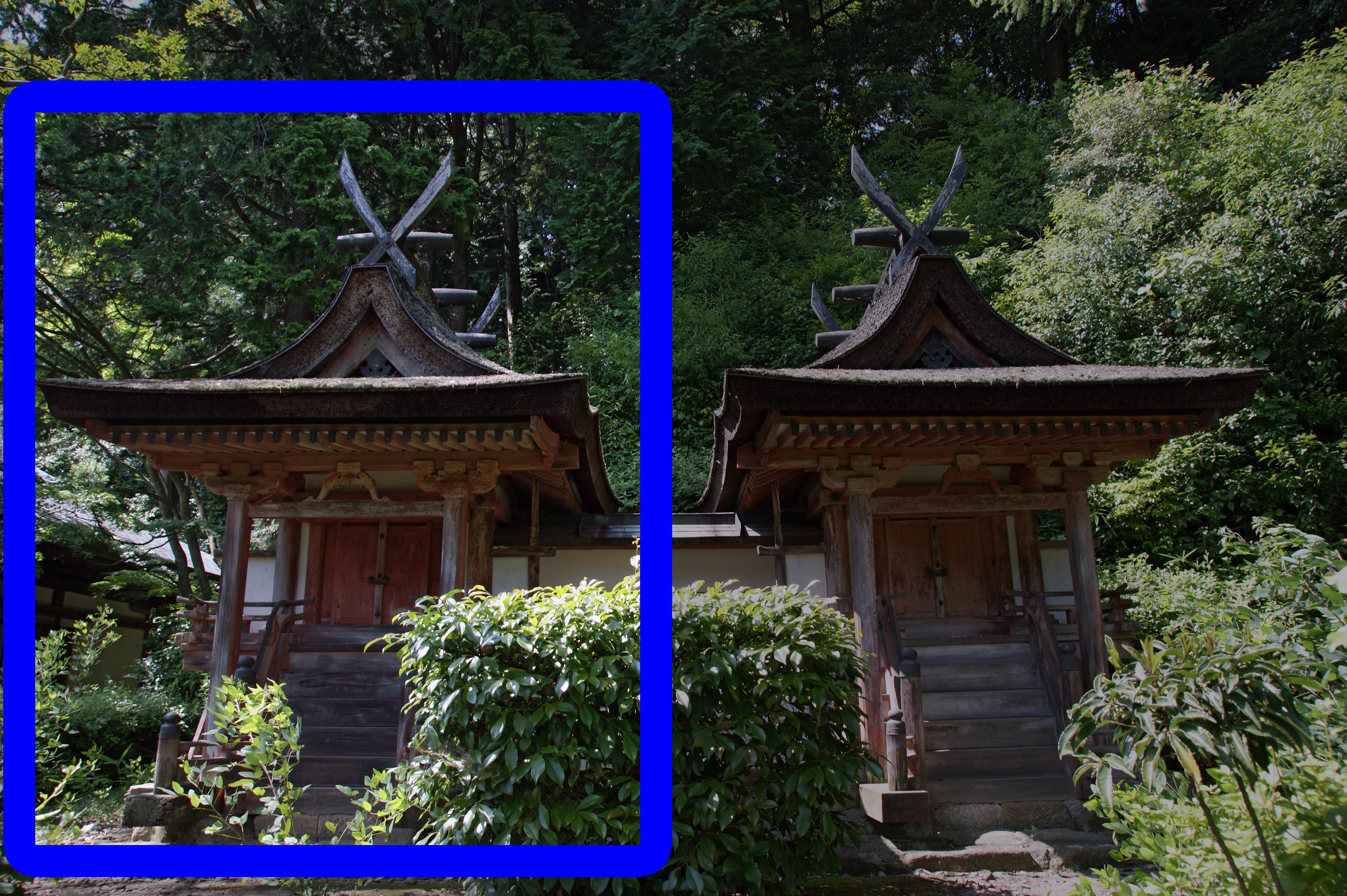File:Enjoji Nara06s4592-focused-left.jpg - Wikimedia Commons