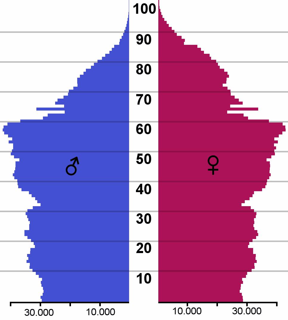 Die Altersstruktur der Bevölkerung Finnlands (Stand 2005) zeigt eine Spitze in den geburtenstarken Jahrgängen 1946–1949.