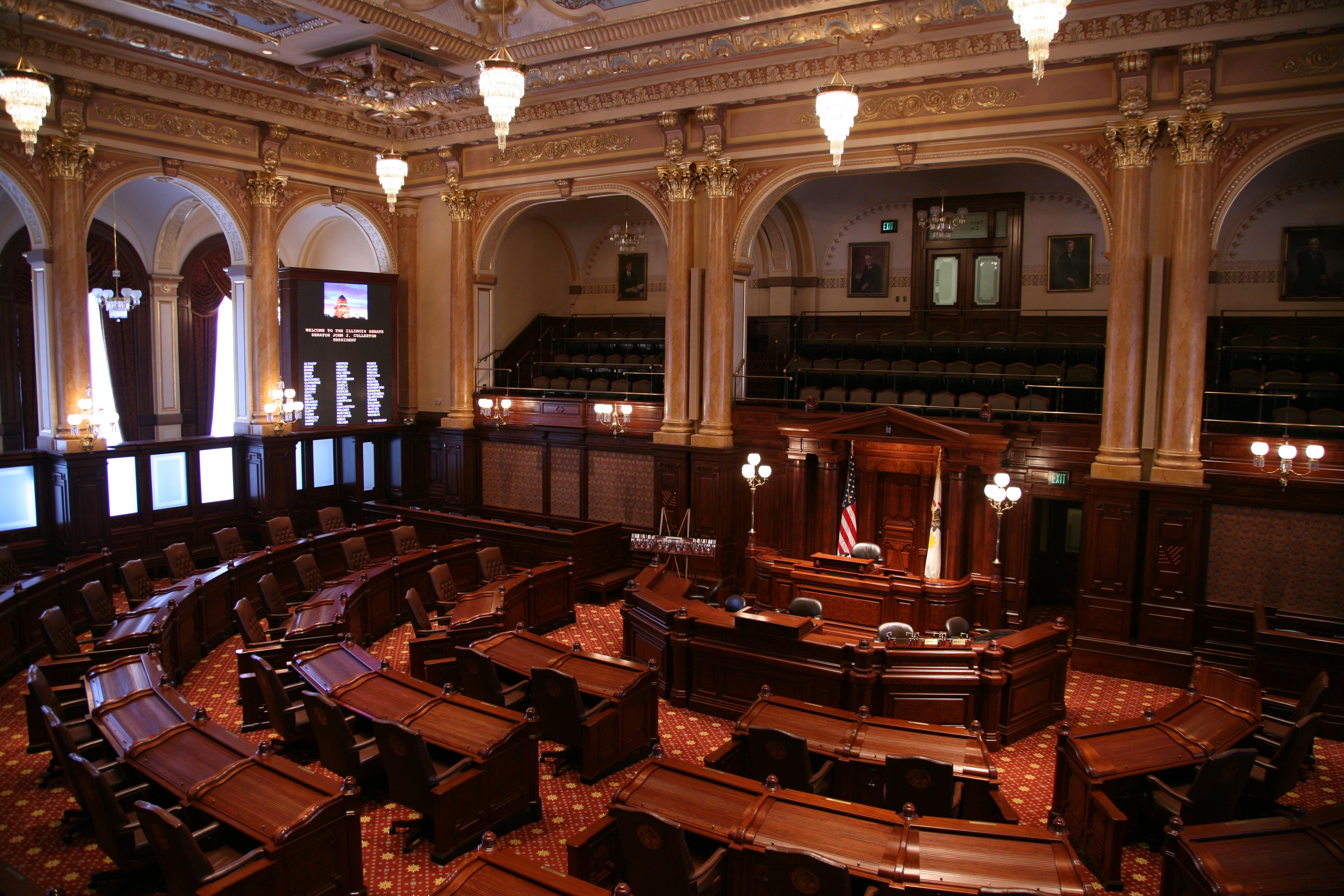 FileIllinois State Senate