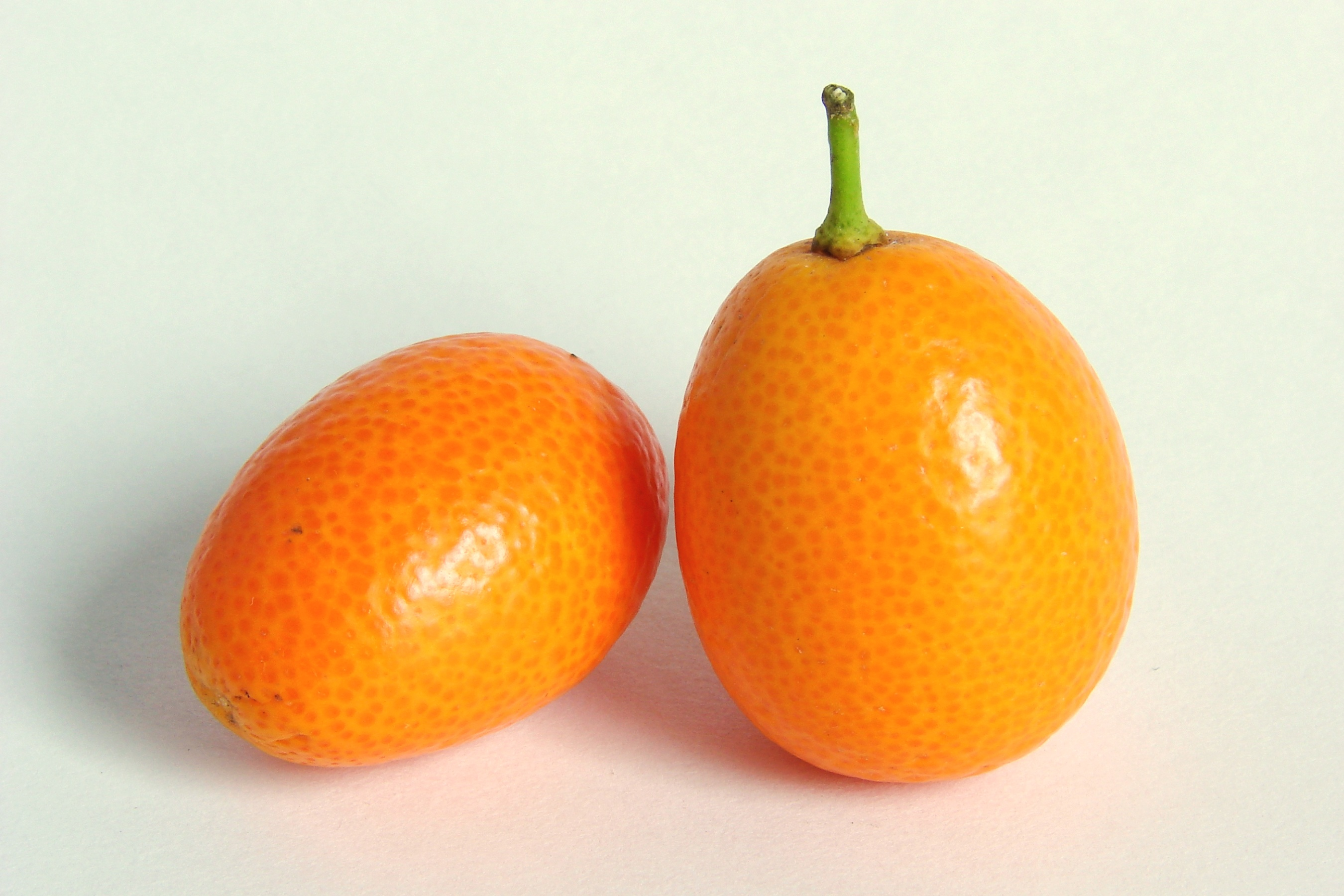File:Kumquat-0245.jpg - Wikimedia Commons