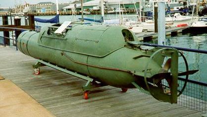 Depiction of Torpedo humano