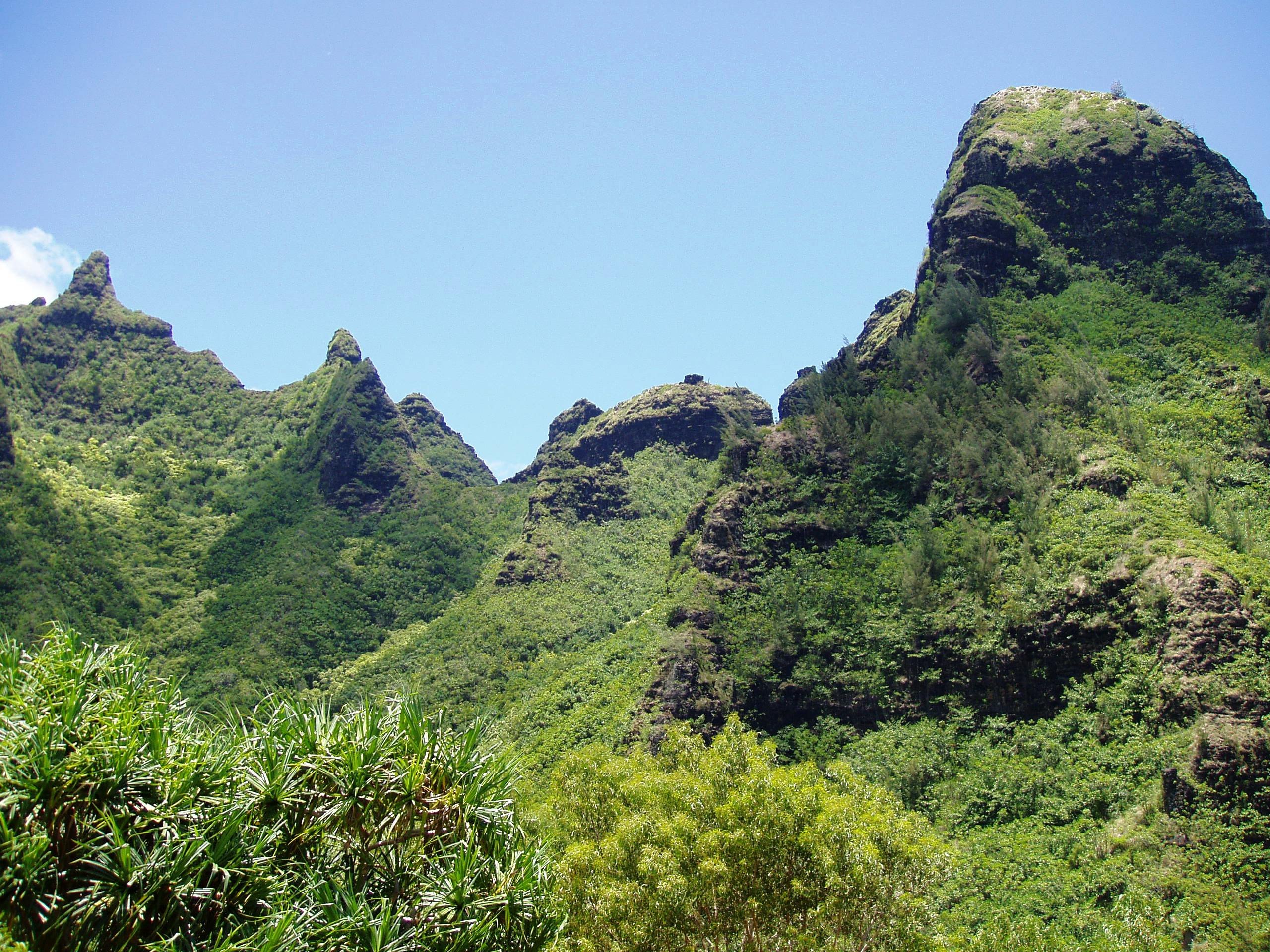 Limahuli Garden And Preserve Wiki Everipedia