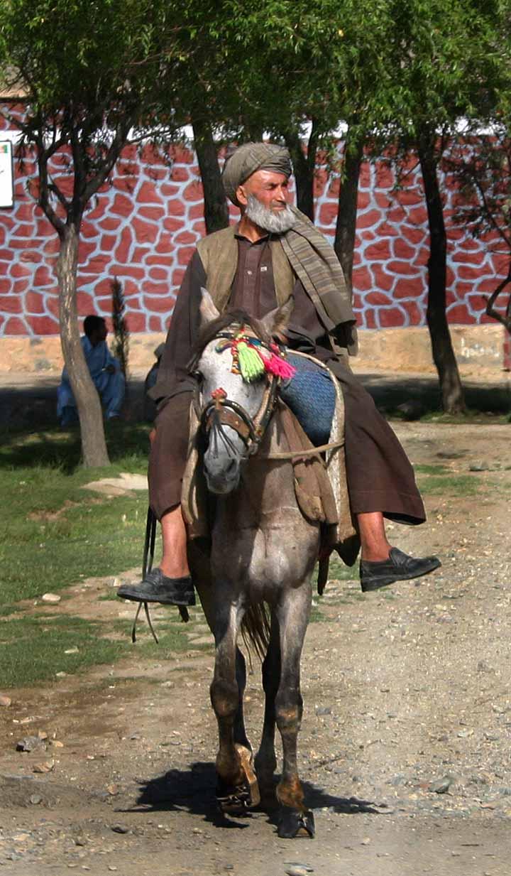 Najbolji prijatelj Man_on_horse,_Afghanistan