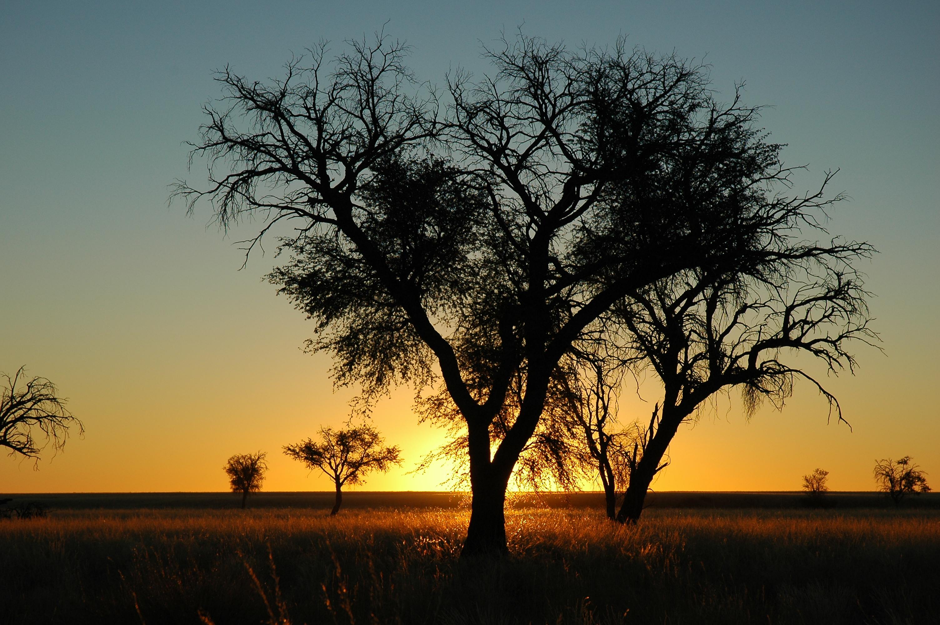 File:Namibie Namib Naukluft Park Sunset 02.JPG - Wikimedia Commons