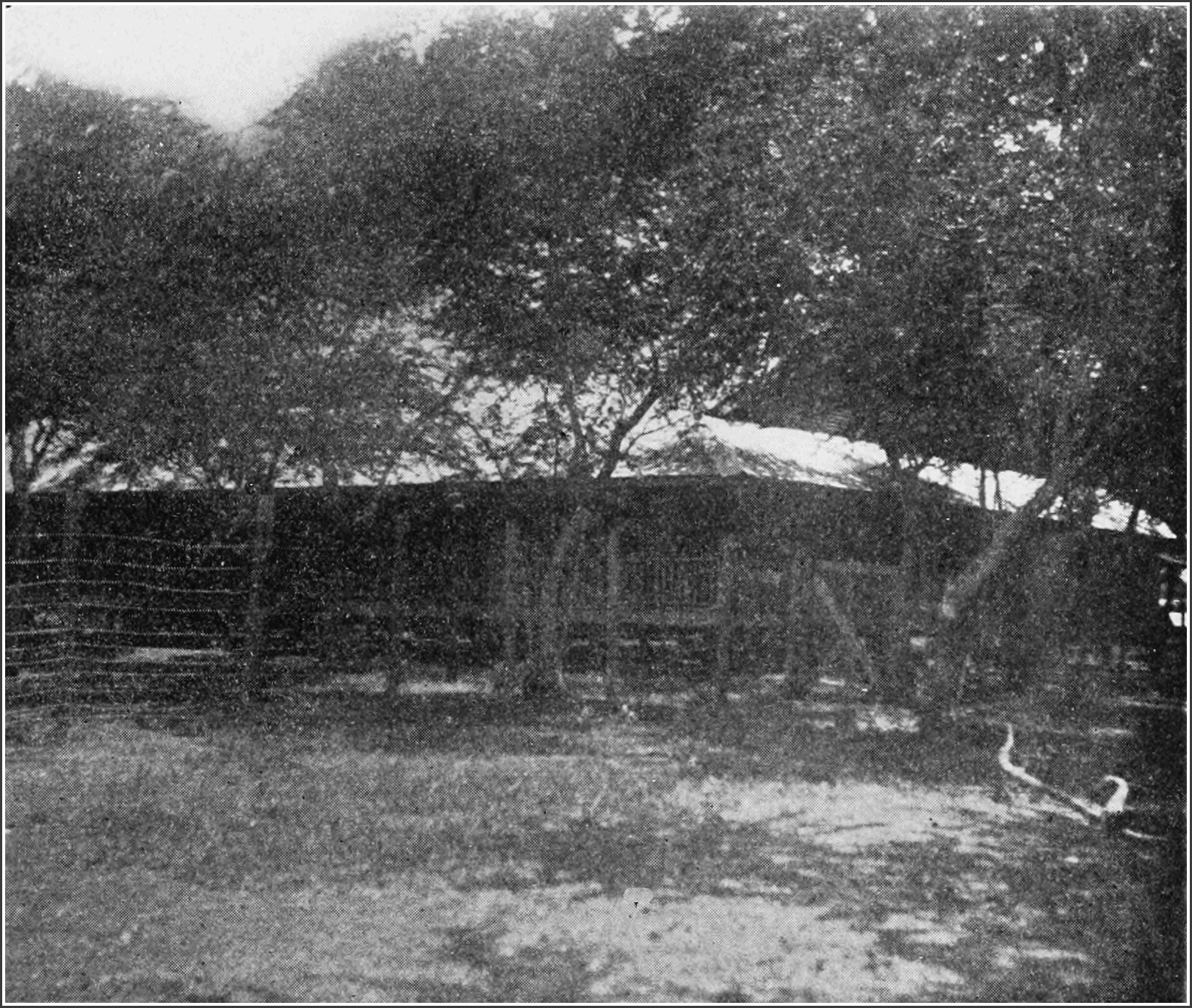 PSM V82 D375 Isolation hospital at the cebu quarantine in the philippines.png