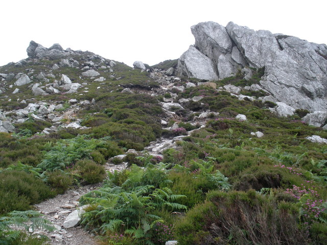 Path, to the top of Holyhead Mountain - geograph.org.uk - 1412068